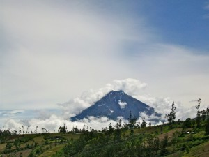 Aleja wulkanów1