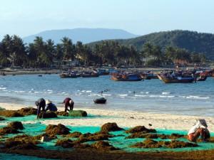 Egzotyczne plaże Nha Trang 1
