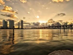 Floryda- jachty i aligatory14