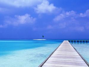 Hotel wyspa1