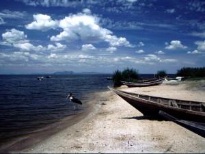 Jezioro Victorii3