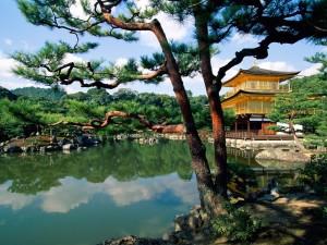 Kioto- tradycja szogunów3