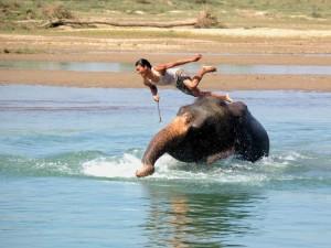 Królewski Park Narodowy Chitwan3