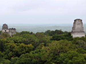 Majestatyczne Tikal2