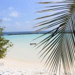 Malediwy (6)