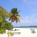 Malediwy (8)