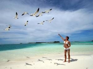 Malediwy Ameryki – wyspy Los Roques