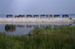 Malownicze jezioro Czubsuguł1