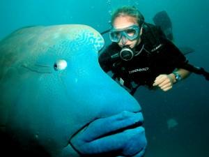 Podwodny świat1