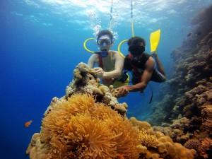 Podwodny świat6