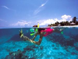 Podwodny świat8