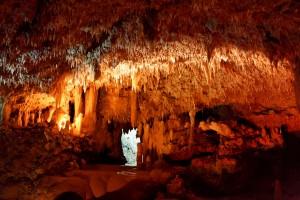 Podziemny świat jaskini Harrisona4