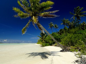 Polinezja Francuska11
