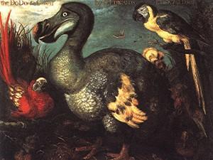 Ptak dodo