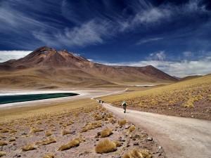 Pustynia Atacama12