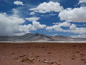 Pustynia Atacama14