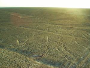 Tajemnicze linie Nazca