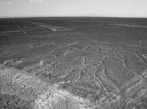 Tajemnicze linie Nazca5