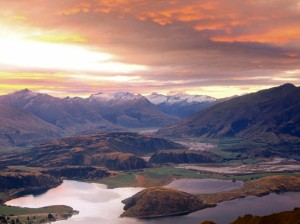 Winnice Central Otago4