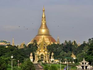 Złote pagody4
